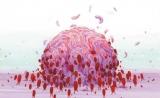 我国学者研发抗癌新药,可100%杀死肺癌等再生细胞