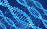 产业前瞻:基因科学能带我们走多远?
