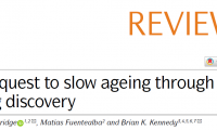 Nature子刊綜述:最具前景的研究性抗衰老療法,二甲雙胍、雷帕霉素名列其中