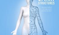 """智能的人体结构!Nature揭示""""低调""""结构细胞在免疫调控中的""""大作用"""""""