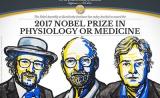 重磅!2017年诺贝尔生理学或医学奖揭晓,发现
