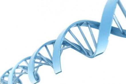 个性化检测工具帮你预防遗传性结直肠癌