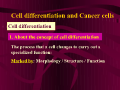 Cell differentiation and Cancer cells