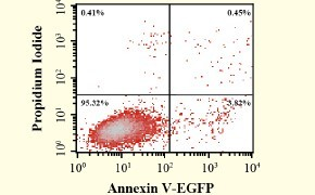 TransDetect Annexin V-EGFP/PI Cell Apoptosis Detection Kit