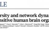 "Nature:哈佛/斯坦福在""迷你脑""领域获重大突破"