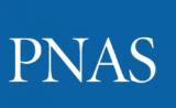 抗癌新证据!维生素A衍生物可杀死癌症干细胞 | PNAS
