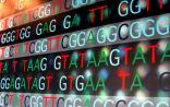 PNAS:卢煜明教授揭示肝癌新发现