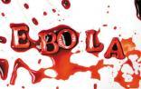 Science关注:埃博拉病毒可潜伏于幸存者精液数月之久