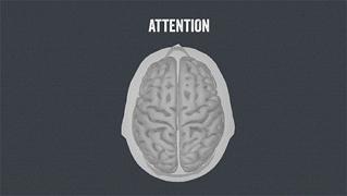 用什么来控制注意力?竟然是脑电波!