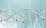 化石和古基因组学会议(Fossils and Ancient Genomics Symposium)已开放注册
