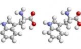 蛋白质组学实验技术之酵母双杂交系统