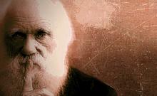 达尔文和他的进化论