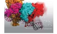 只知紫外线致癌,这种DNA损伤及修复背后的分子机制你可知?