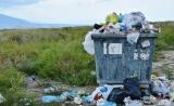 解决塑料污染的重任,恐怕要交给真菌了