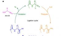 刷新认知!科学家发现不用氨基酸就能合成多肽,有望回答生命起源之谜