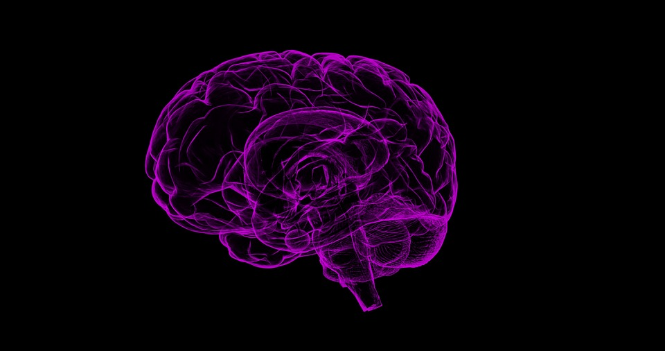 闪烁光为何能对抗老年痴呆?原来是触发大脑中信号化学物质释放