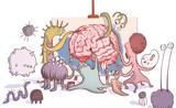 """Cell子刊:人类第二""""大脑""""——肠道,我们还需要知道更多"""