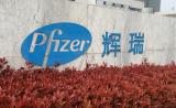 辉瑞成立一家6人初创公司,注入4款潜力新药,1.03亿美元A轮融资