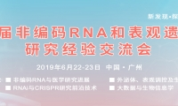 新發現? 調控生命奧秘丨第六屆非編碼RNA和表觀遺傳學交流會在廣州圓滿舉辦