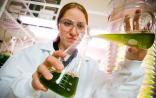 全球生物制药市场:未来七年将扩展至6千亿美元