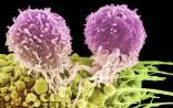 两篇NEJM:孩子为什么会得癌症?