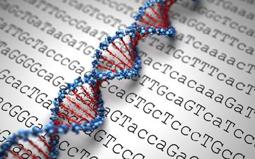 下一代测序:癌症个性化治疗的核心