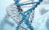 """大数据与基因技术结合 拯救可怕的""""帕金森"""""""