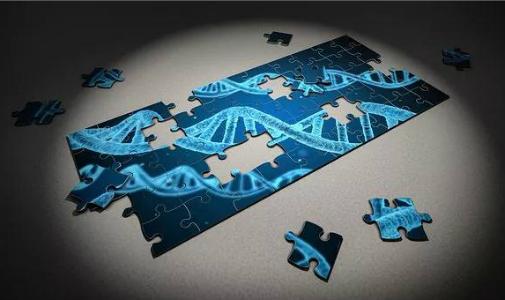 新方法!哈佛学者以基因突变探秘蛋白质3D结构