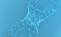 流式细胞术在癌症耐药研究中如何应用?看看他们怎么说!