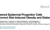 """Cell子刊:脑洞大开!基因编辑让皮肤变""""药库"""",治疗肥胖和糖尿病!"""