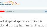 颠覆旧识!关于精子,这点认知我们错了 | Nature子刊
