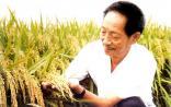 杂交水稻之父袁隆平获2014年诺贝尔和平奖提名