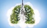 可帮基因肺癌分型基因检测获得中国发明专利授权