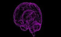 """血压轻度升高,人也不知不觉变""""傻""""!牛津大学2万人研究提示血压改变大脑结构"""