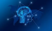 Cell子刊:人脑GPS是如何实现的?科学家发现独特神经元!