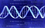 Nature Methods:两轮捕获+双重测序 成就史上最精准的测序!