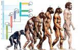 人类进化史上的十大突破