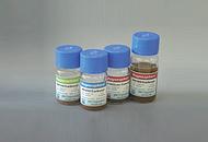 诊断试剂用亲水性磁珠(链霉亲和素)