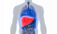 Nature:科学家揭示癌症最常扩散到肝脏的原因