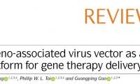 Nature综述:AAV如何成为基因疗法的首选载体?