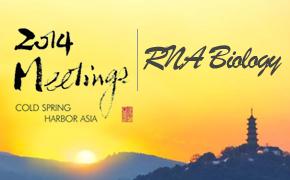 2014年冷泉港亚洲会议:RNA Biology