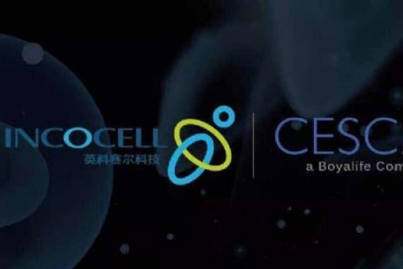 博雅控股集团宣布推出CAR-T及其他细胞制造的CDMO服务