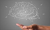 注意了!注意力减退影响记忆功能!