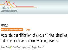 Nature子刊:赵方庆团队提出环状RNA定量和可变剪接体转换识别的新方法