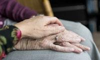 Science重磅!揭开衰老之谜背后的关键机制