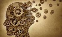 Nature子刊:海马昼夜节律钟揭示时间对记忆恢复的调节作用