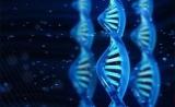 祝贺!又一款NGS伴随诊断获批(可检测324个基因、靶向5种癌症……)