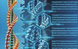 【Cell综述】从癌症基因组到精准肿瘤学
