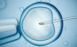 胚胎染色体检查是大龄妇女的救命稻草吗?