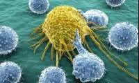 肿瘤学霸主将易位!新的BMS取代罗氏 默沙东进前三